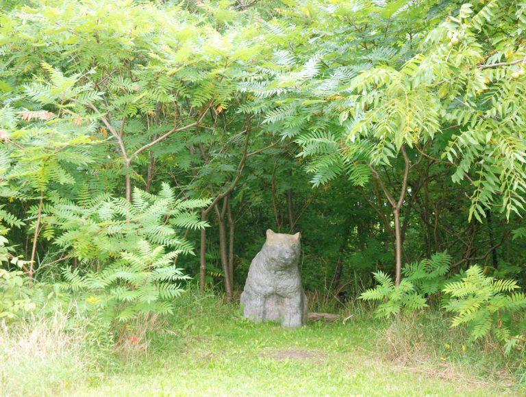 Bear statue in the Arboretum